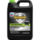 Havoline Conventional Gallon Concentrate -62 F to 265 F Automotive Antifreeze Image 1